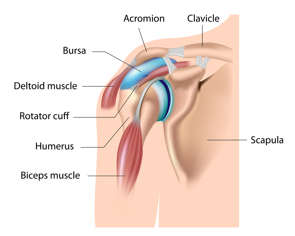 Shoulder Pain: It may be an easy fix