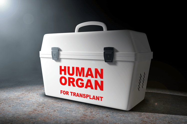 Organ Donor Transplants
